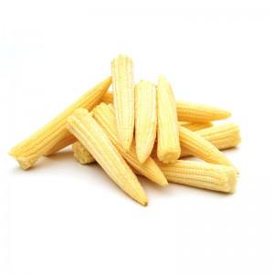 Baby Corn Image